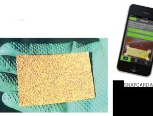 Water Sensitive Paper